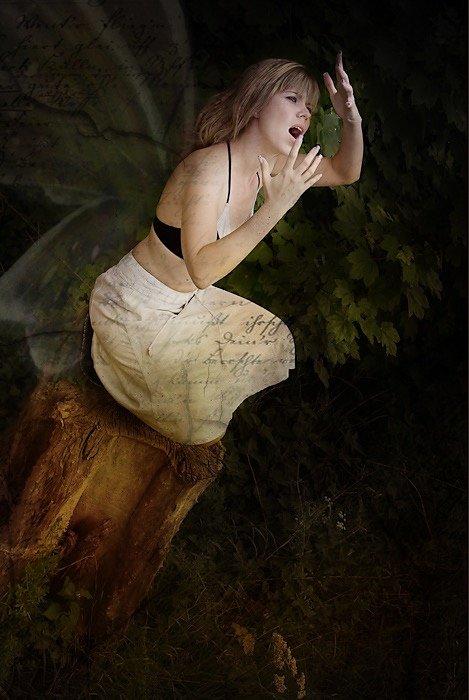 FairyTale (2008)